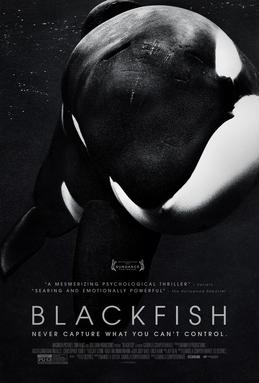Blackfish DVD on Amazon.com