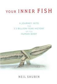 Your Inner Fish: The 3.5 Billion Year History of the Human Body by Neil Shubin