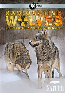 Radioactive Wolves PBS NOVA Documentary on Amazon.com